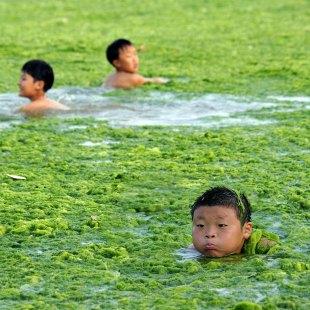 kids-swimming_1947658i
